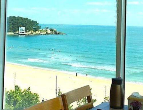 『必去』韓國釜山 松亭海水浴場 獨家私房景點+超人氣鮑魚飯 다솥맛집