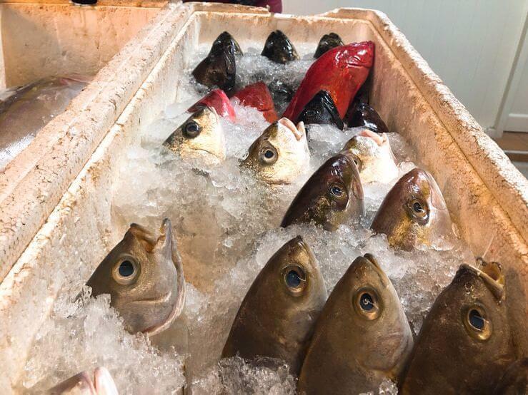 永富鮮魚湯